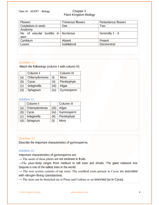 NCERT Solutions for Class 11 Biology Chapter 3 Plant Kingdom