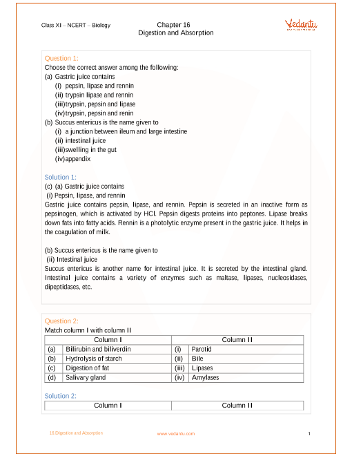 NCERT Solutions for Class 11 Biology Chapter 16 Digestion and ...