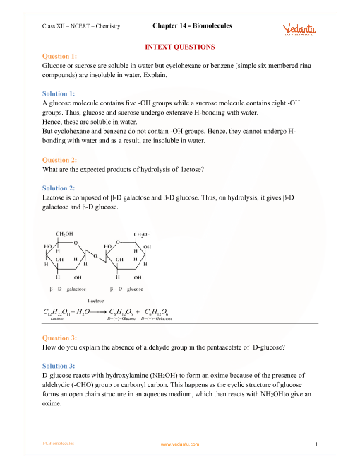 NCERT Solutions for Class 12 Chemistry Chapter 14