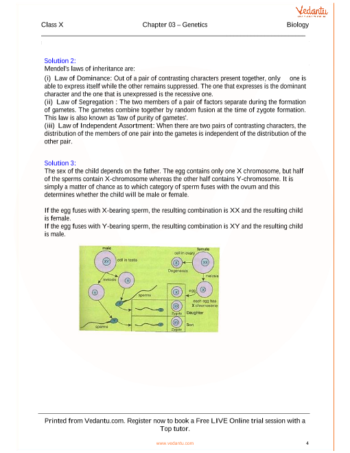 Genetics-Some Basic Fundamentals Solutions for ICSE Board