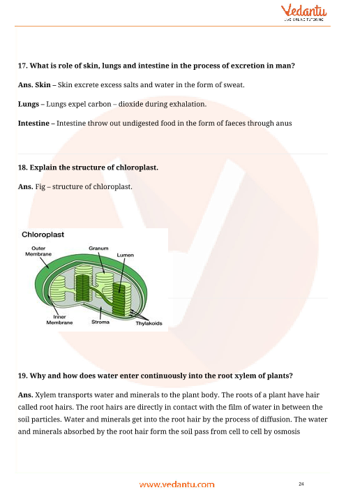 Important Questions for CBSE Class 10 Science Chapter 6