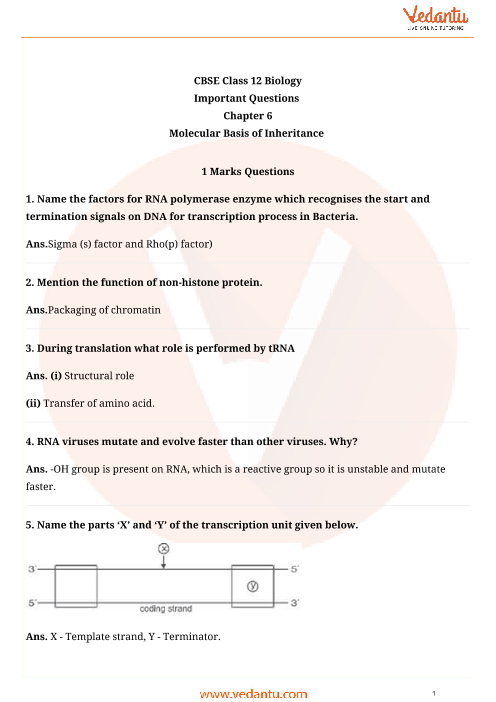 Important Questions Class 12 Biology Chapter 6 part-1