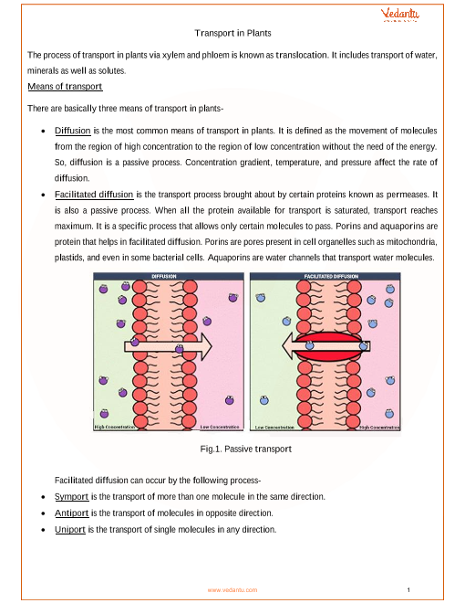 CBSE Class 11 Biology Chapter 11 - Transport in Plants Revision Notes