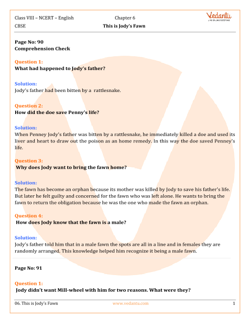 NCERT Solutions for Class 8 English Honeydew Chapter 6 - This is
