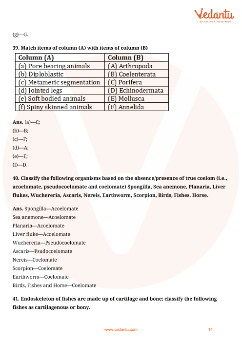 NCERT Exemplar for Class 9 Science Chapter 7 - Diversity in