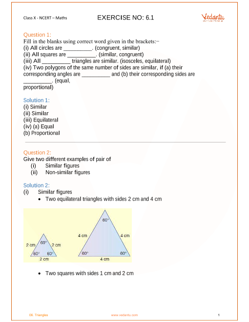NCERT Solutions for Class 10 Maths Chapter 6 Triangles (Ex
