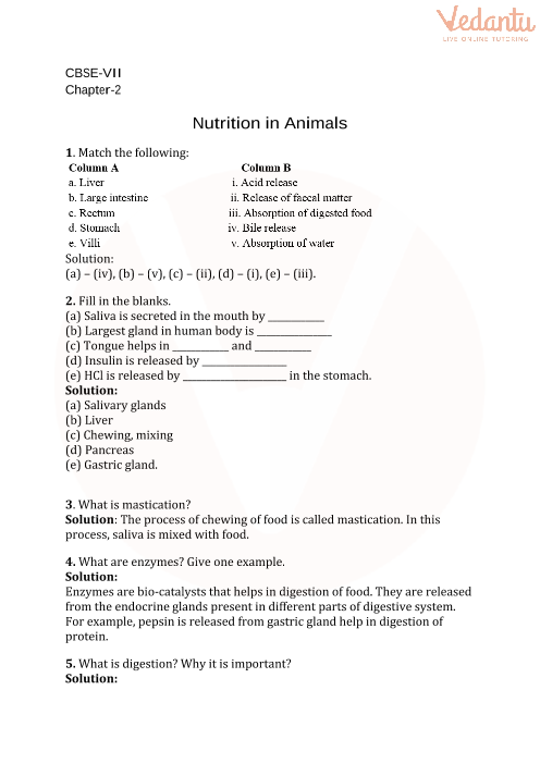 CBSE Class 7 Science Nutrition in Animals Worksheets with