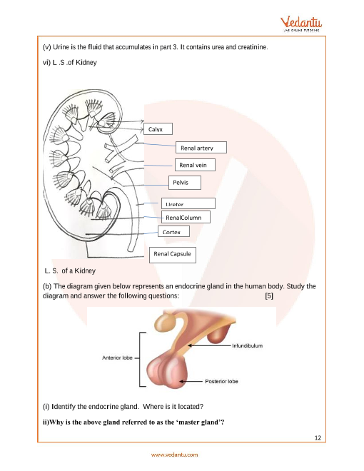 Previous Year Biology Question Paper for ICSE Class 10 Board
