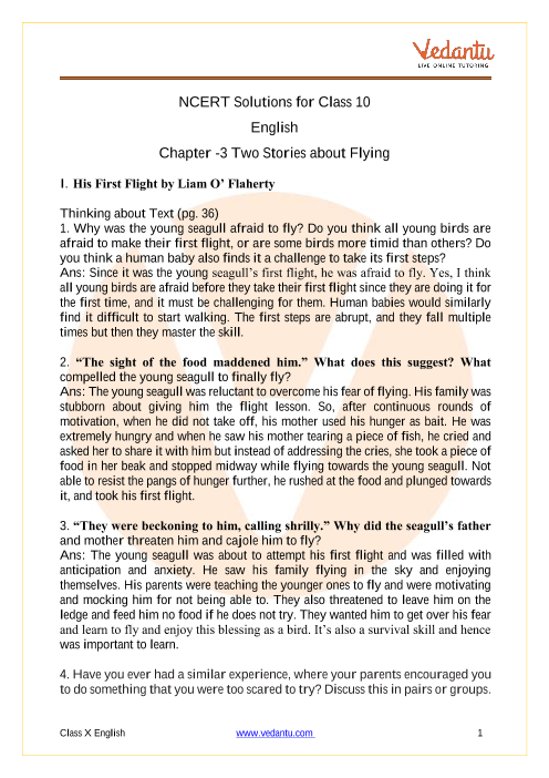 NCERT Solutions for Class 10 English First Flight Chapter 3 Two Stories about Flying part-1