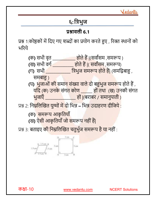 NCERT Solutions for Class 10 Maths Chapter 6 Triangles in Hindi PDF Download part-1