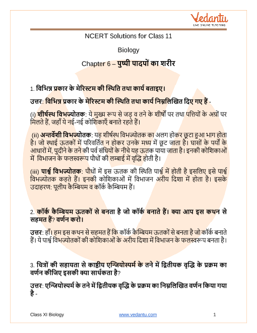 NCERT Solutions for Class 11 Biology Chapter 6 Anatomy of Flowering Plants in Hindi PDF Download part-1