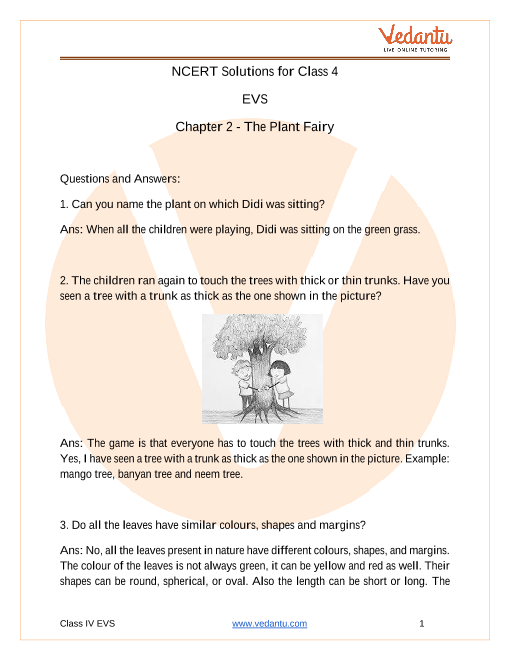 NCERT Solutions for Class 3 EVS Chapter 2 The Plant Fairy part-1