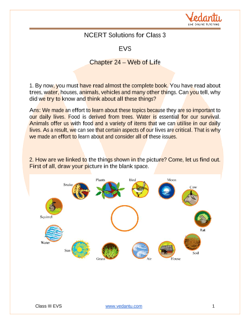 By Photo Congress || Ncert Class 3 Evs Worksheet Web Of Life