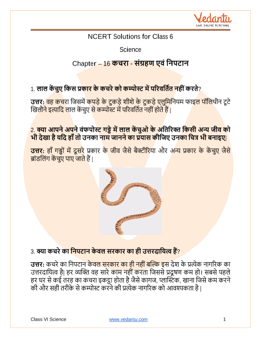NCERT Solutions for Class 6 Science Chapter 16 Garbage In, Garbage Out in Hindi part-1