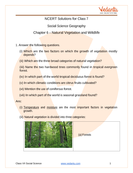 NCERT Solutions for Class 7 Social Science Our Environment Chapter 6 Natural Vegetation and Wildlife part-1