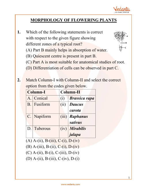 NEET Morphology of Flowering Plants Important Questions part-1