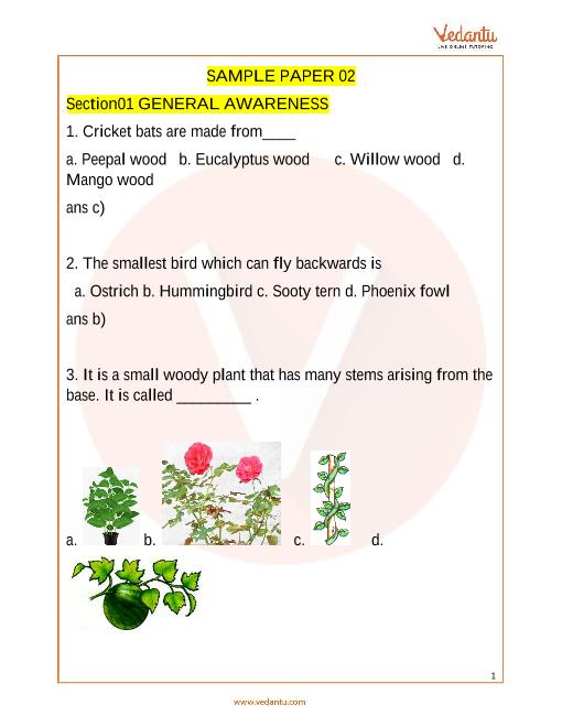 IGKO_Class 3_Sample Paper_2 part-1