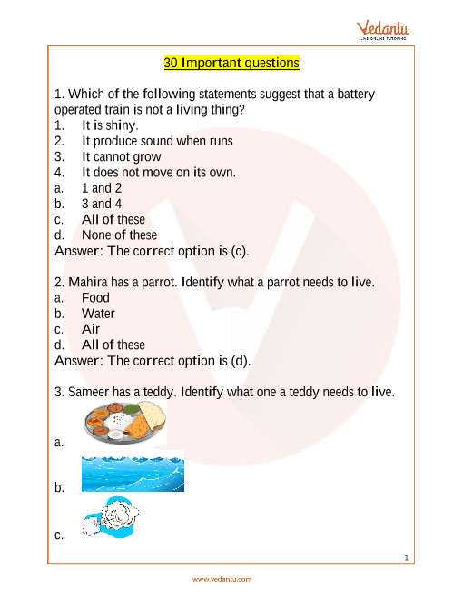 NSO_Class 1_Important Questions part-1