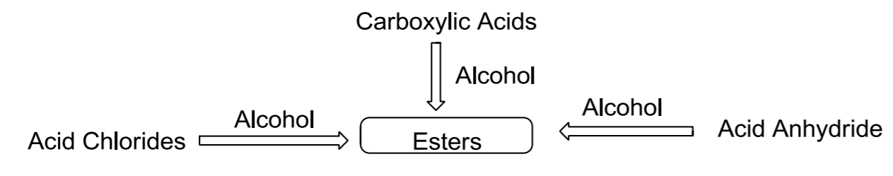 Ester - Structure of Ester | Synthesis and Reactions of Ester